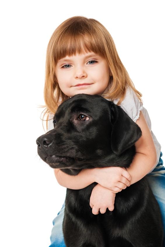 Seguridad para niños y animales solos en casa