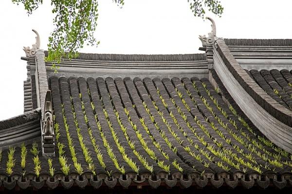 revestimientos tejados.jpg
