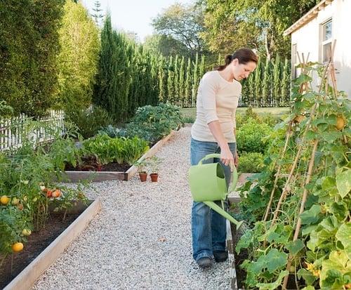 jardines sostenibles.jpg